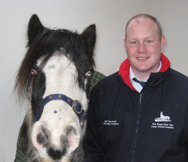 Neil Twonsend Equine Surgeon